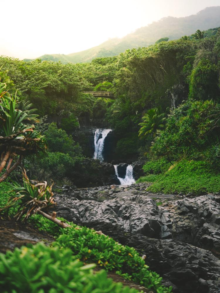 Seven Sacred Pools - Maui - Hawaii by Nathan Ziemanski on Unsplash